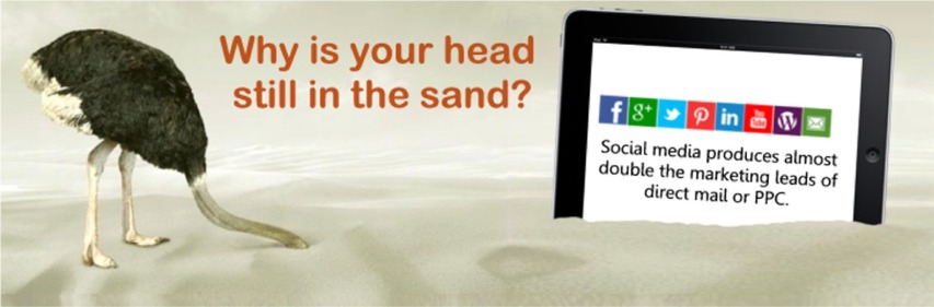 Social Media Marketing head in sand